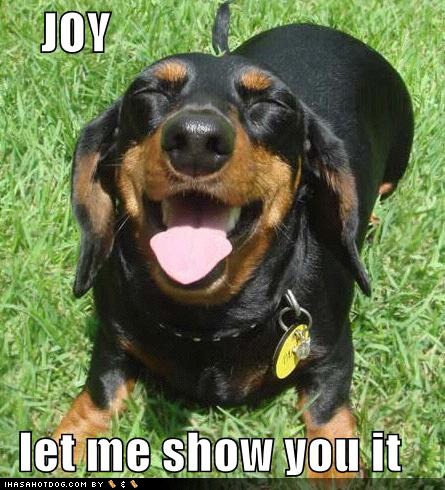 joy-let-me-show-you-it