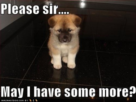 cute-puppy-pictures-loldogs-please-sir-may-i-have-some-more